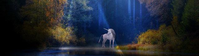 unicorn-1999549_640